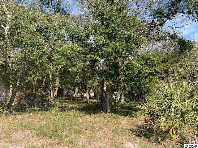 506 30th Ave. S, Atlantic Beach, SC 29582 (MLS #2105680) :: Team Amanda & Co