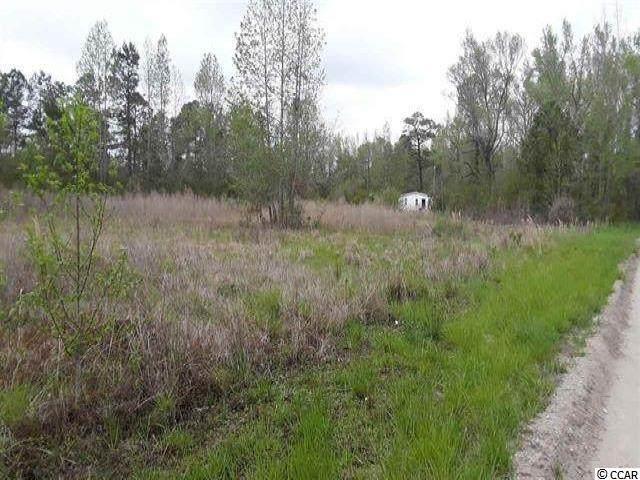 910 Fremont Rd., Longs, SC 29568 (MLS #2106629) :: Armand R Roux   Real Estate Buy The Coast LLC