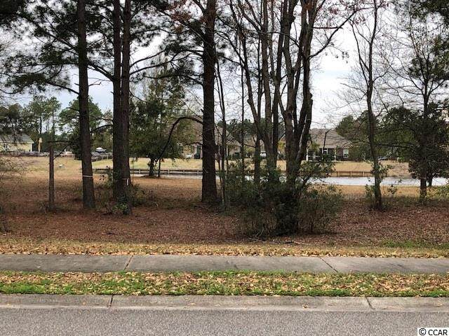 1463 Whooping Crane Dr., Conway, SC 29526 (MLS #2106707) :: The Litchfield Company