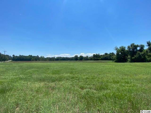 TBD William Nobles Rd., Aynor, SC 29511 (MLS #2113307) :: Jerry Pinkas Real Estate Experts, Inc