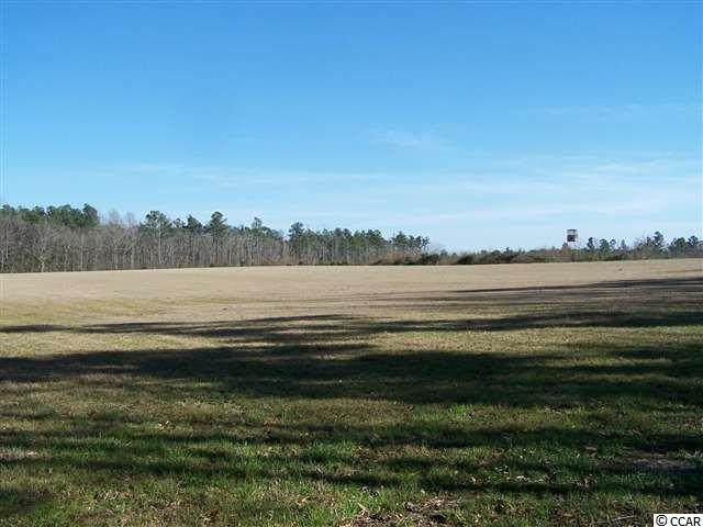 TBD Prison Camp Rd., Whiteville, NC 28472 (MLS #2121219) :: Sloan Realty Group