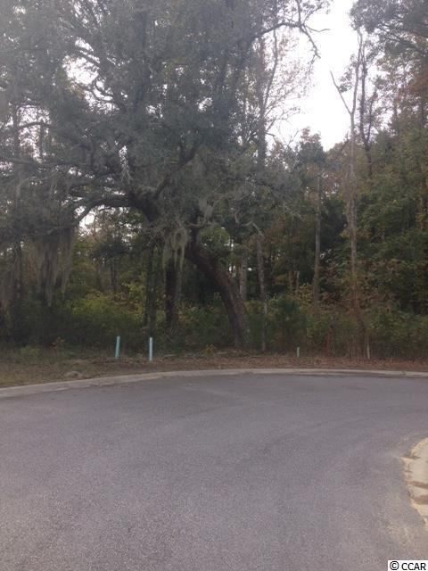 Lot 43 Board Landing Circle, Conway, SC 29526 (MLS #1420714) :: The Litchfield Company
