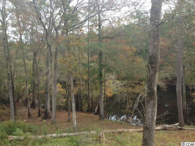 Lot 44 Board Landing Circle, Conway, SC 29526 (MLS #1420715) :: The Litchfield Company