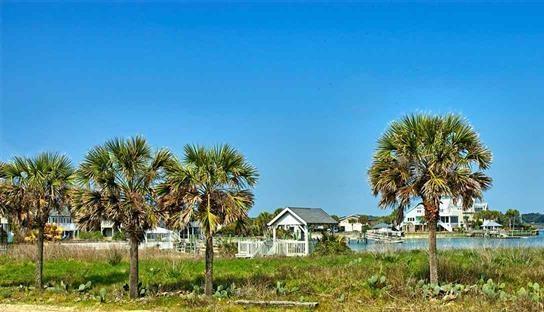 2080 S Waccamaw Drive, Garden City Beach, SC 29576 (MLS #1608631) :: The Litchfield Company