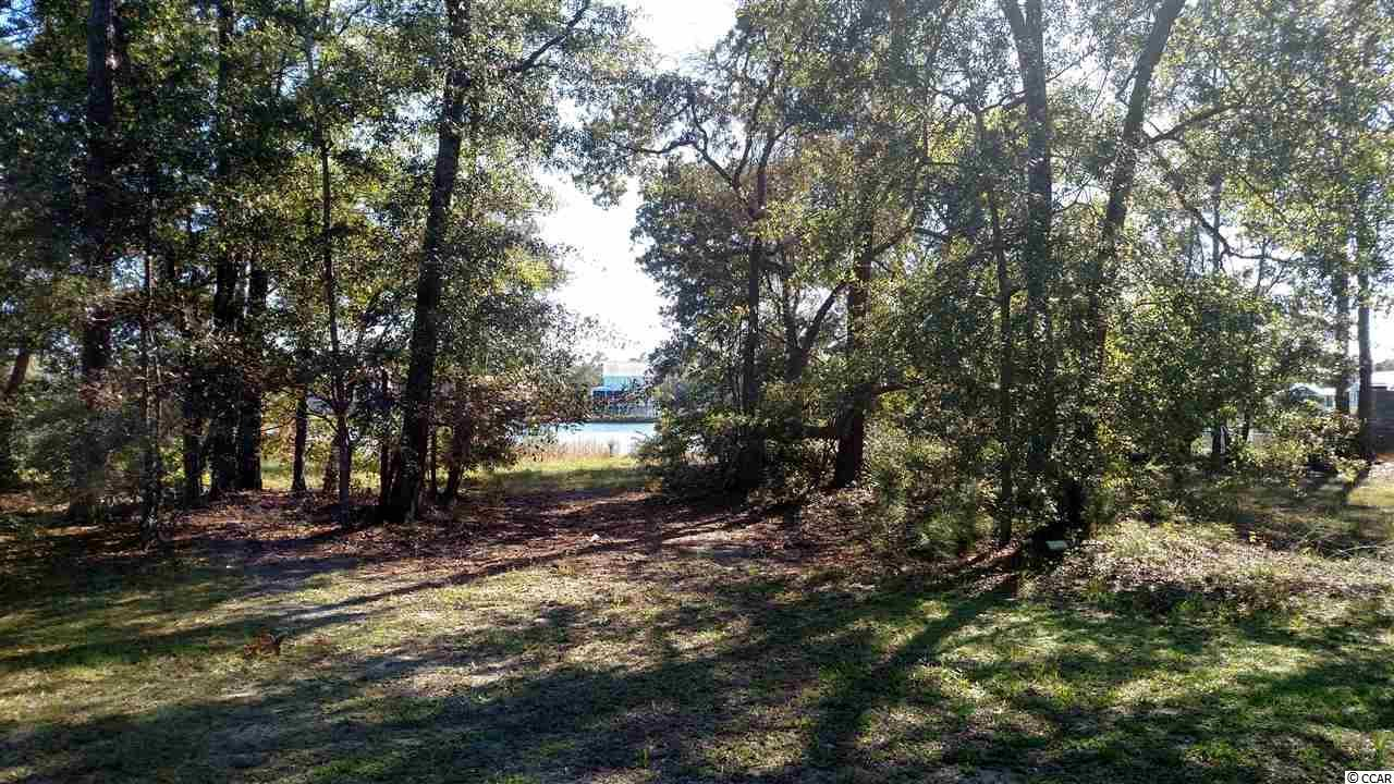 LOT#1 Deep Lake Dr. - Photo 1