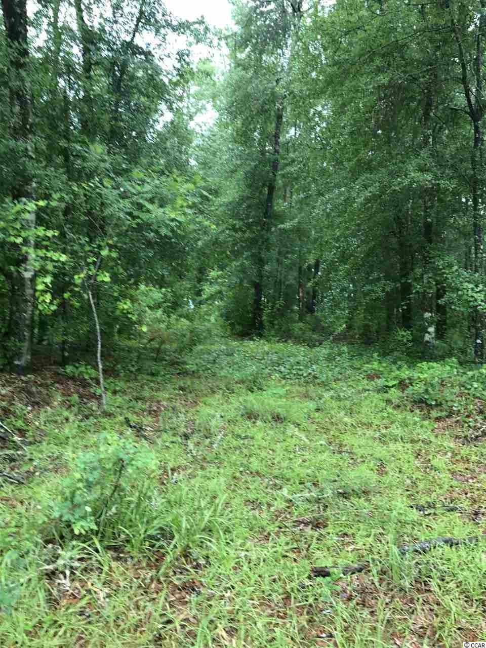 Lot 3 Mohican Dr. - Photo 1