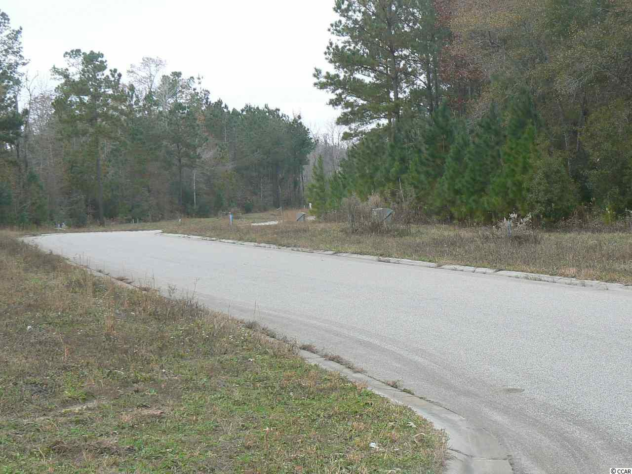 2 lots Red Bluff Village - Photo 1