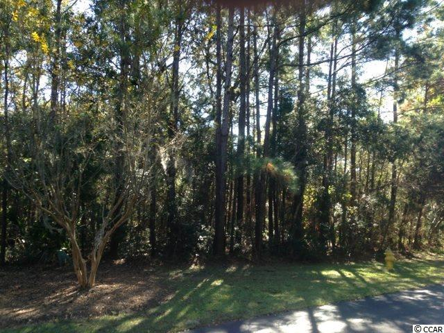 Lot 99 Shearwater Ct., Georgetown, SC 29440 (MLS #1724297) :: James W. Smith Real Estate Co.
