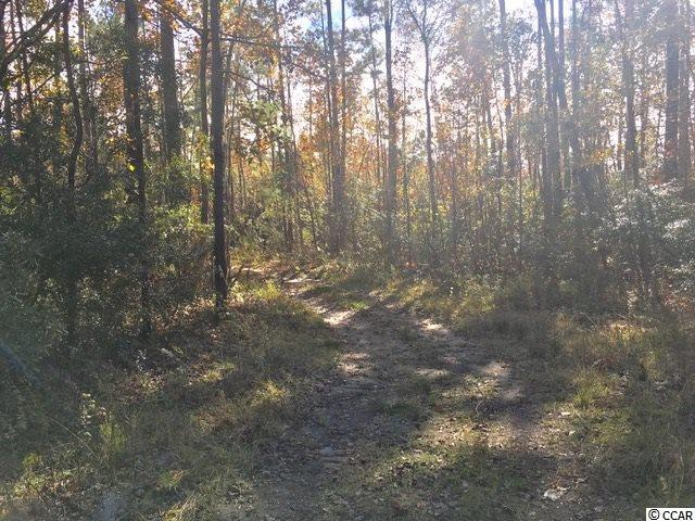 Lot 18 Ladd Dr., Myrtle Beach, SC 29588 (MLS #1724703) :: The Hoffman Group