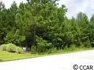 Edisto River Rd., Myrtle Beach, SC 29588 (MLS #1804569) :: Garden City Realty, Inc.