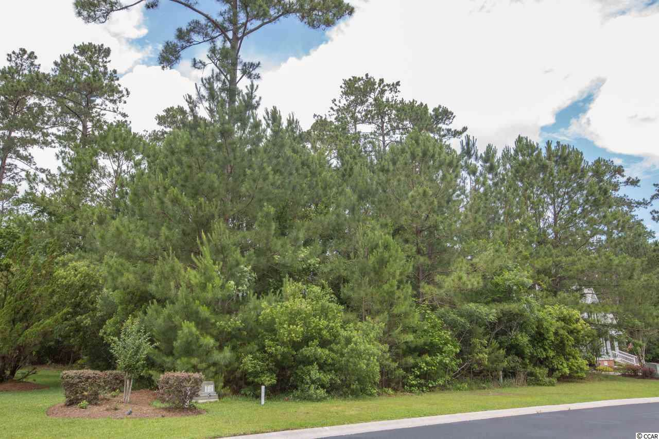 226 Low Country Loop - Photo 1
