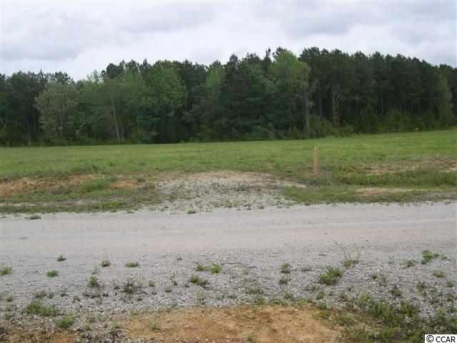 Lot # 2 Clemmons Dr., Tabor City, NC 28463 (MLS #1811616) :: The Litchfield Company