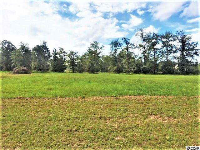 .62 Acres Holcombe Ln. - Photo 1