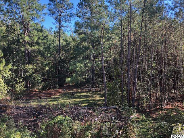 Highway 50, Little River, SC 29566 (MLS #1821617) :: The Litchfield Company