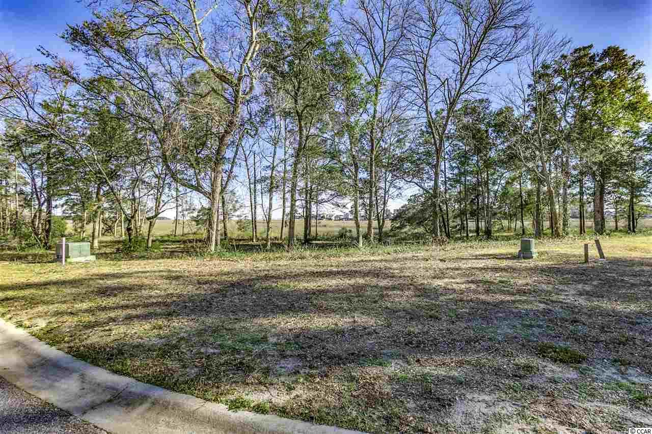 LOT 88 Marsh Pt. - Photo 1