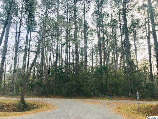1789 Running Water Rd., Murrells Inlet, SC 29576 (MLS #1901329) :: The Hoffman Group