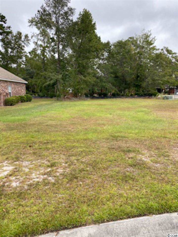 156 Swallow Tail Ct. - Photo 1