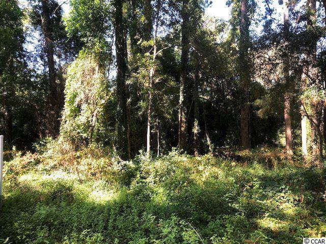 Lot 3 Cedar Grove Ln., Pawleys Island, SC 29585 (MLS #2019822) :: Armand R Roux | Real Estate Buy The Coast LLC