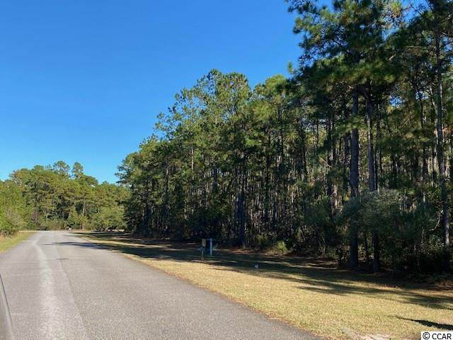 420 Red Wolf Trail, Myrtle Beach, SC 29579 (MLS #2024776) :: The Litchfield Company