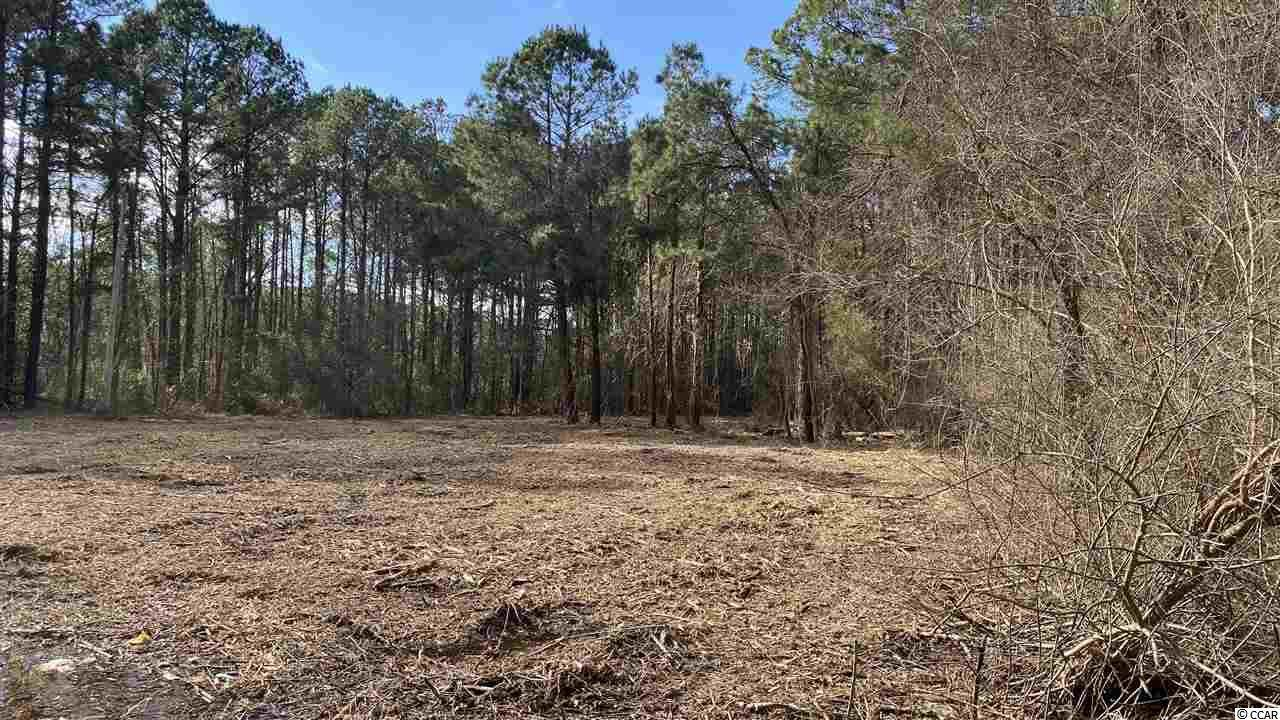 17.1 Acres Mount Zion Rd. - Photo 1