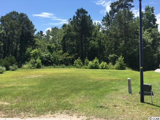 4378 Kinlaw St., Little River, SC 29566 (MLS #1812667) :: The Hoffman Group