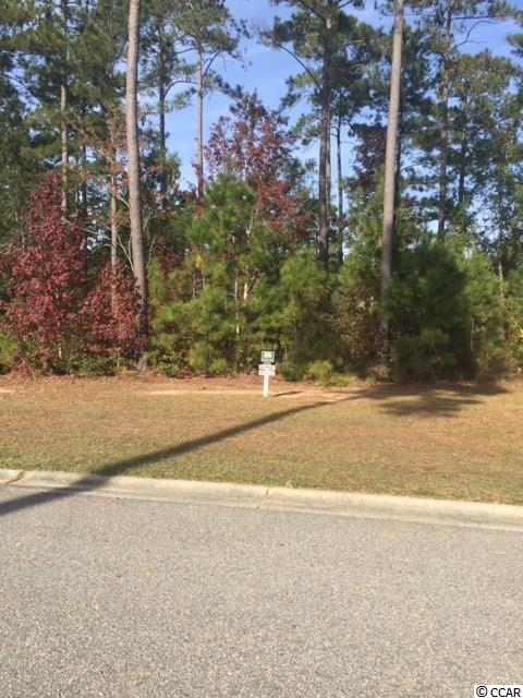 Lot 104 Knotty Pine Way, Murrells Inlet, SC 29576 (MLS #1824403) :: The Hoffman Group