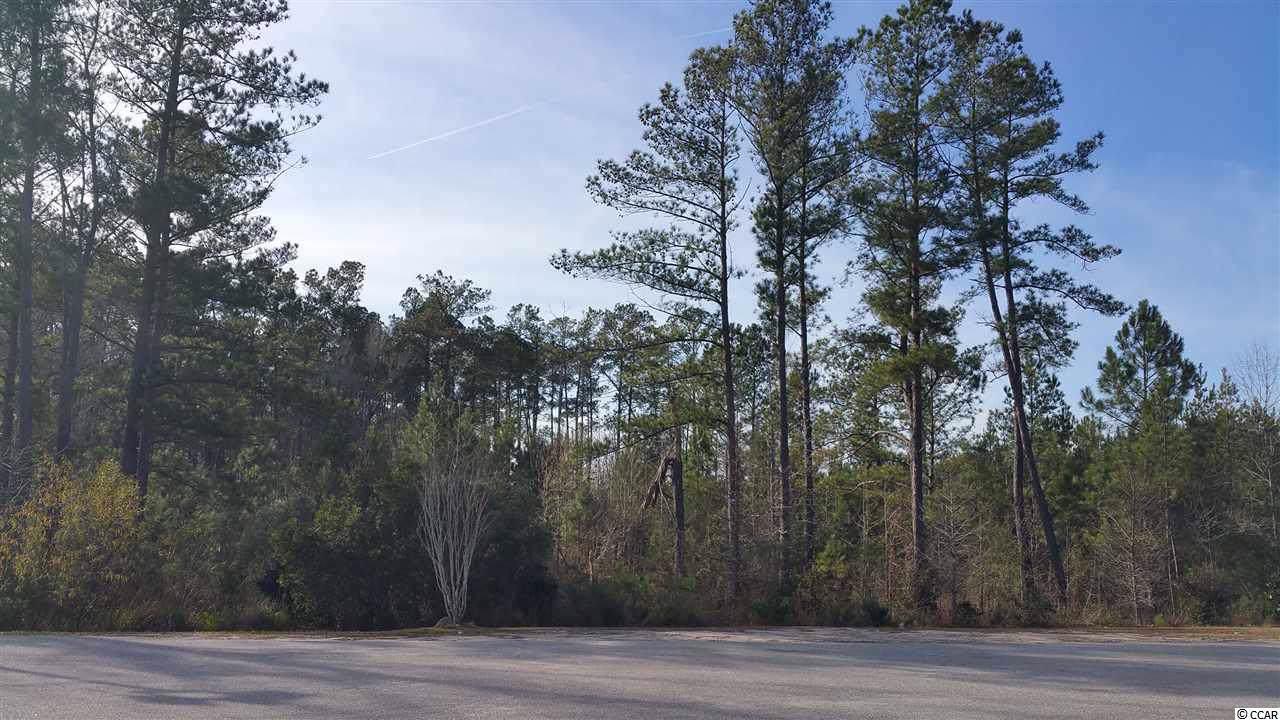1 acre Highway 378 - Photo 1
