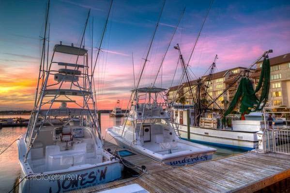Basin Dr, Garden City Beach, SC 29576 (MLS #1707418) :: Myrtle Beach Rental Connections