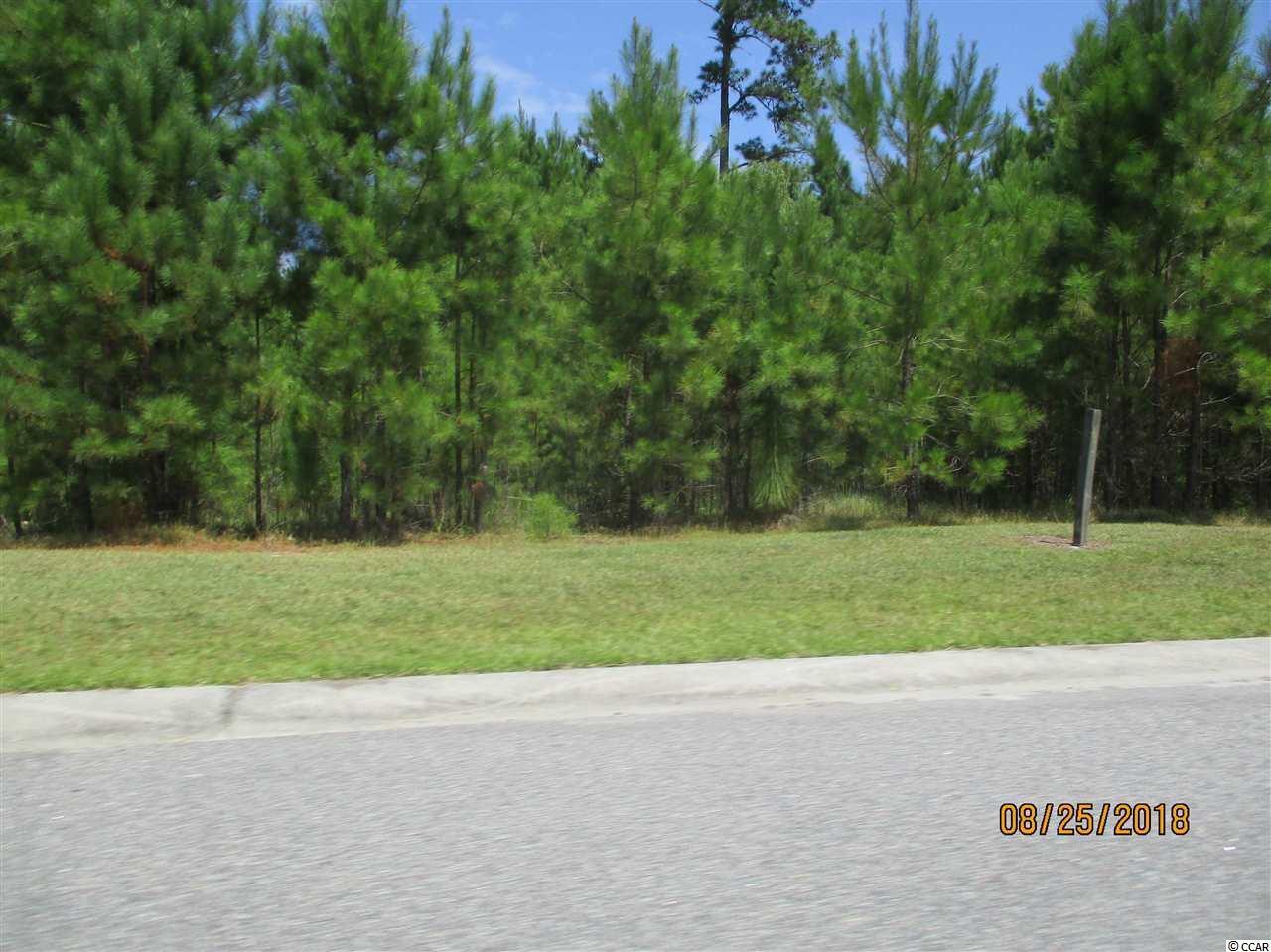 565 Timber Creek Dr. - Photo 1