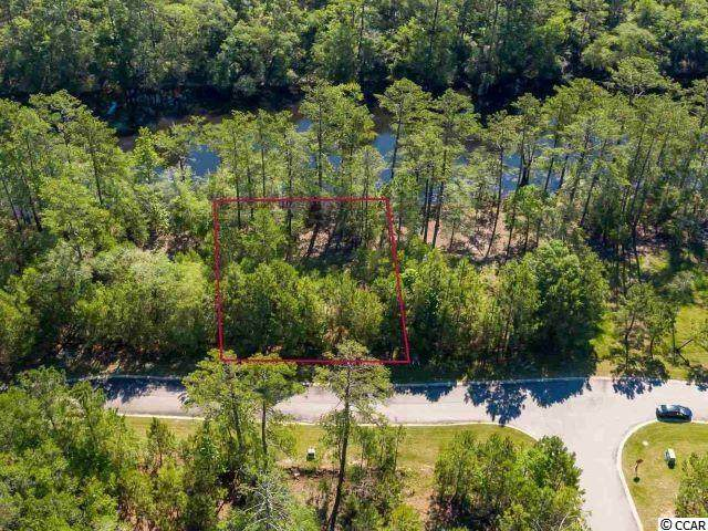 317 Cypress Flat Ct., Conway, SC 29526 (MLS #2113069) :: Jerry Pinkas Real Estate Experts, Inc