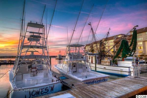 Basin Dr., Garden City Beach, SC 29576 (MLS #1707418) :: Sloan Realty Group
