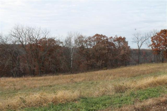 Lot 11 Majestic Oak Ridge Lane, Harpers Ferry, IA 52146 (MLS #20150066) :: Amy Wienands Real Estate