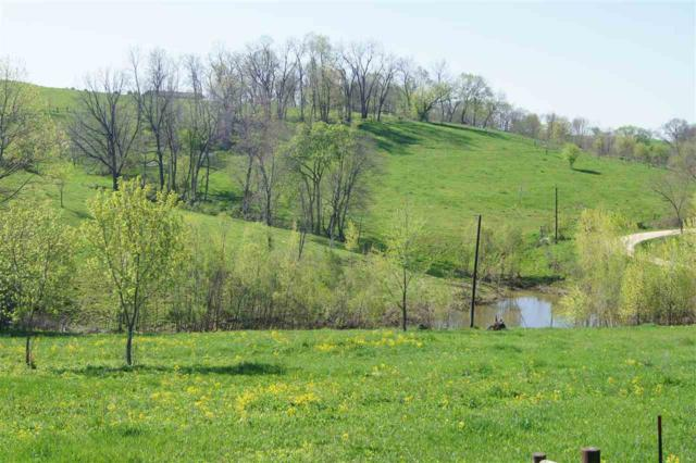416 Highway 76, Harpers Ferry, IA 52146 (MLS #20172838) :: Amy Wienands Real Estate
