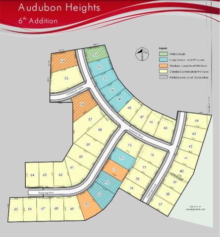 #56 Audubon Drive, Waterloo, IA 50701 (MLS #20175825) :: Amy Wienands Real Estate
