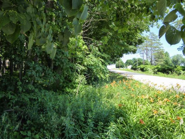 2.32 acre lot 250th Street, Denver, IA 50622 (MLS #20180045) :: Amy Wienands Real Estate