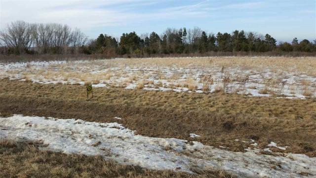LOT 1 270th Street, Parkersburg, IA 50665 (MLS #20182260) :: Amy Wienands Real Estate