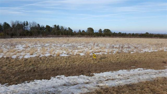 LOT 4 270th Street, Parkersburg, IA 50665 (MLS #20182263) :: Amy Wienands Real Estate