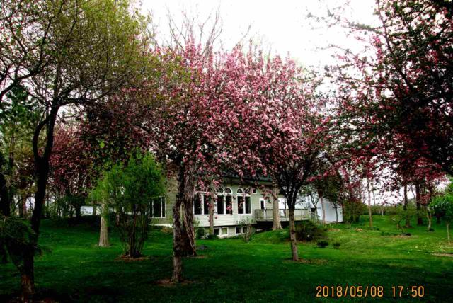 1605 Easton Avenue, Waverly, IA 50677 (MLS #20183707) :: Amy Wienands Real Estate
