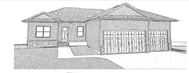 1225 SE 1st Street, Waverly, IA 50677 (MLS #20185401) :: Amy Wienands Real Estate