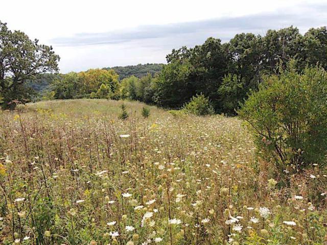 31 Views End Lane, Lansing, IA 52151 (MLS #20190567) :: Amy Wienands Real Estate