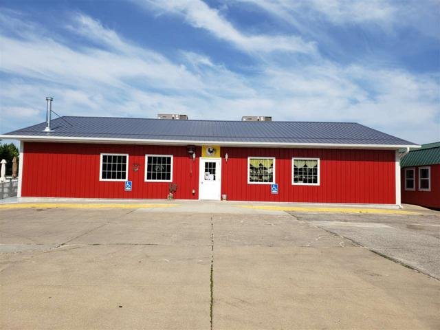 119 Commercial Street, Strawberry Point, IA 52076 (MLS #20193927) :: Amy Wienands Real Estate