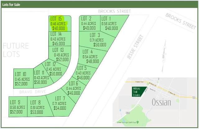 100 Bravo Drive, Ossian, IA 52161 (MLS #20201940) :: Amy Wienands Real Estate