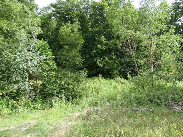 Whippoorwill Hollow, Harpers Ferry, IA 52146 (MLS #20203908) :: Amy Wienands Real Estate