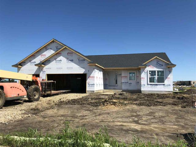 2621 Maple Grove Drive, Cedar Falls, IA 50613 (MLS #20183410) :: Amy Wienands Real Estate