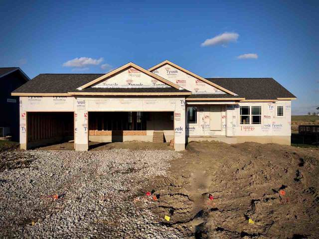 1446 Audubon Drive, Waterloo, IA 50701 (MLS #20195846) :: Amy Wienands Real Estate