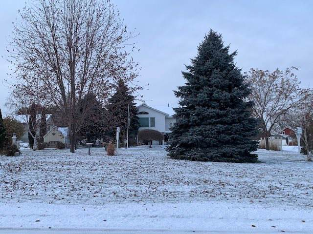 808 Commerce Drive, Decorah, IA 52101 (MLS #20196115) :: Amy Wienands Real Estate