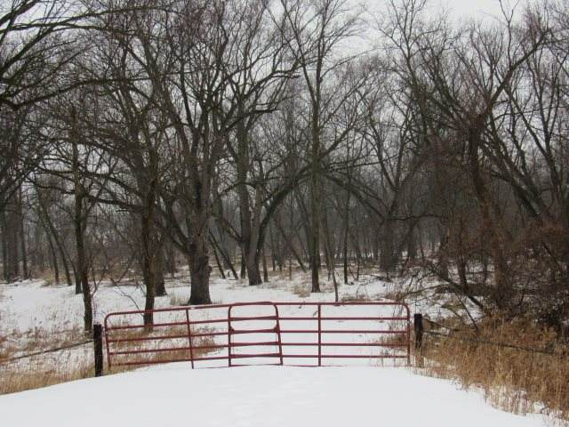 Pheasant Road, Hopkinton, IA 52237 (MLS #20200689) :: Amy Wienands Real Estate