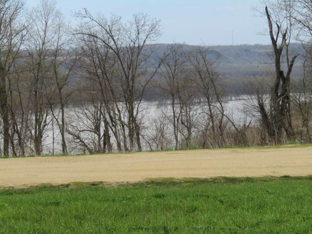 Lot 17 River Ridge South, Guttenberg, IA 52052 (MLS #20201949) :: Amy Wienands Real Estate