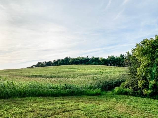 2513 Horton Road, Waverly, IA 50677 (MLS #20203800) :: Amy Wienands Real Estate