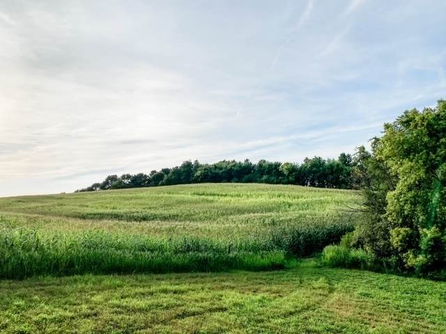 Address Not Published, Waverly, IA 50677 (MLS #20211068) :: Amy Wienands Real Estate
